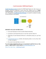 Lead Generation   B2B Email Experts