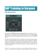 SAP Training in Gurgaon