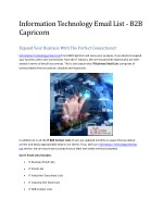 Information Technology Email List - B2B Capricorn