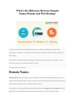 Whats the Difference Between Domain Names,Website and Web Hosting?