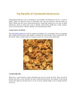 Benefits of Chantrelle Mashrooms