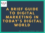 A Brief Guide to Digital Marketing in Today's Digital World
