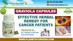 Graviola Capsules (Soursop) - Effective Herbal Remedy for Cancer Patients