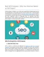 Best SEO Company | Why Your Business Needs an SEO Expert