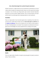 Hire a Real Estate Agent for Lucrative Property Investment