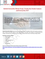 Knitted Geotextiles Market Scope, Trends, Key Vendor Analysis and Forecast by 2017