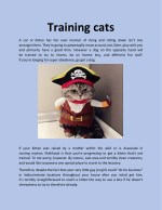 Training cats