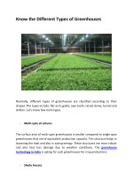 Know the Different Types of Greenhouses