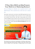 MLM Classified- Best Way To expanding Business Leads Via Online Method
