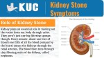 Impact of Kidney Stones on One's Health