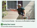 Pest Control Noida – services at affordable budget