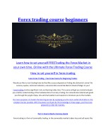 Forex trading course beginners