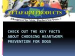 Check Out the Key Facts about Choosing Heartworm Prevention for Dogs