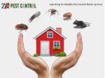 Searching for Reliable Pest Control Noida Services