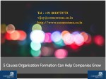 5 Causes Organisation Formation Can Help Companies Grow