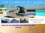 IDEAS ON THE DESIGNER DOG BEDS NOW BEST FOR PET