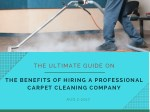 The Advantage of Hiring a Professional For Carpet Repair