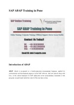 SAP ABAP Training in Pune PDF