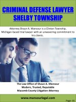 Criminal Defense Lawyer Shelby Township