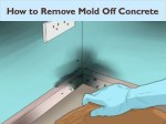 How to Remove Mold off Concrete