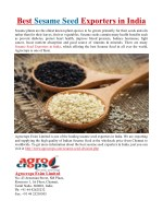 Best Sesame Seed Exporters in India