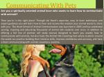 Pet Communication
