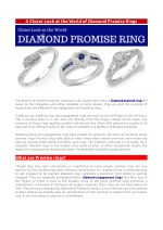 A Closer Look at the World of Diamond Promise Rings