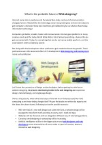 What is the probable future of Web designing?