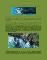 Reasons That Make Guests Confident in Cave Diving Activity in GinnieSprings