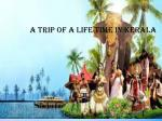 a trip of a lifetime in kerala