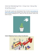 Internet Marketing Firm | How Can I Grow My Small Business?