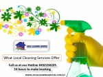 What Local Cleaning Services Offer