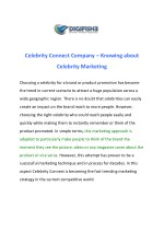 Celebrity Connect Company – Knowing about Celebrity Marketing