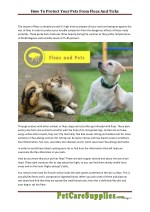 How to Protect Your Pets from Fleas and Ticks