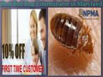 Best Bed Bug Exterminator in Maryland