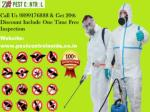 Get 20% OFF |Just Dial 9899176888 Pest Control Noida