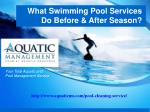 What Swimming Pool Services Do Before & After Season?