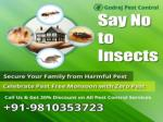 Hurry Up Get 20% Discount Pest Control in Delhi | South Delhi