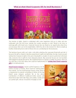 What are Best Diwali Corporate Gifs for Small Businesses ?