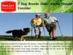 7 Dog Breeds Older Adults Should Consider