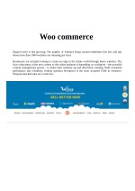 Virtina Ecommerce Experts