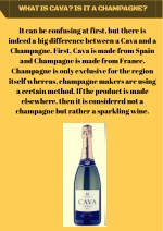 What is Cava? Is it a Champagne?