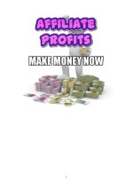 Affiliate programs Instant pay