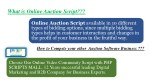Auction Software and Online Auction Script for Better Bidding platform