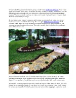 Early Winter Lawn Care Important tips