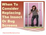 When To Consider Replacing The Insect Or Bug Screens