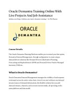 Oracle Demantra Training Online With Live Projects And Job Assistance