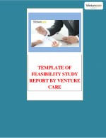 Template of Feasibility study report by Venture Care|How to write a feasibility report | Venture Care