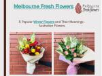 Winter Flowers in Australia and Their Meanings – Melbourne Fresh Flowers