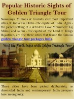 Popular Historic Sights of Golden Triangle Tour